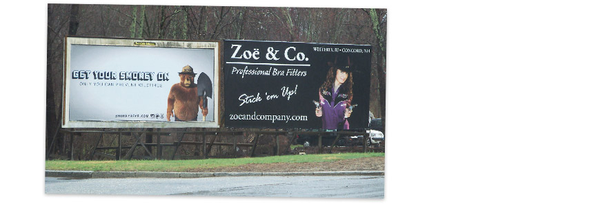 Zoe & Co. Professional Bra Fitters