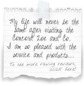 """My life will never be the same after visiting the Concord Zoe and Co. I am so pleased with the service and products..."" To see more raving reviews, click here!"